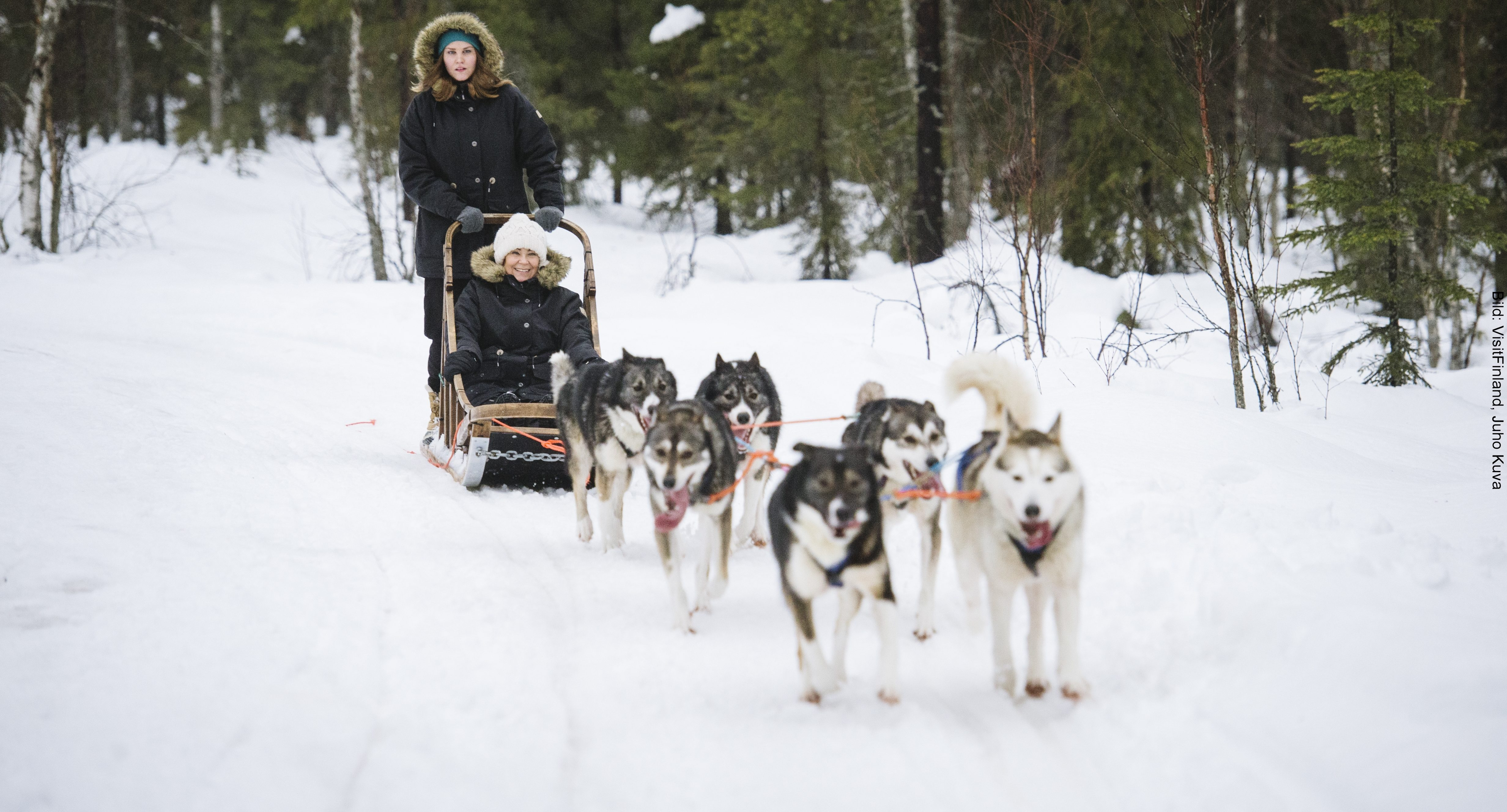 Fähre Finnland Huskytour
