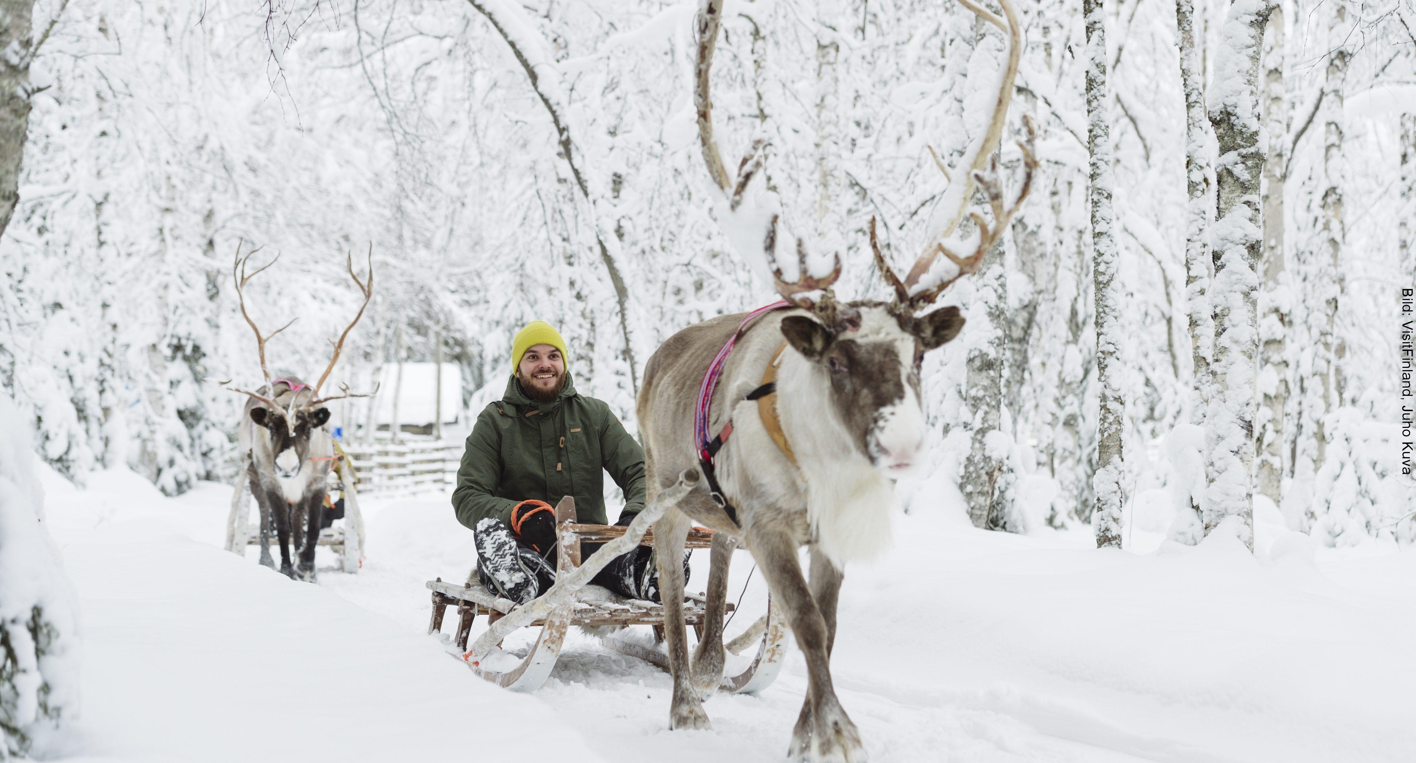 Fähre Finnland Rentierschlitten